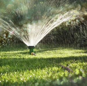 sprinklers, maintenance
