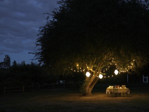 Safe Outdoor Lighting