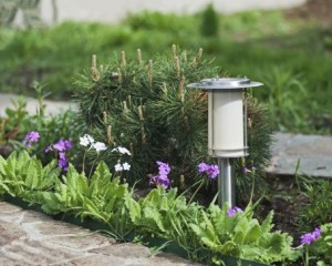 landscaping, outdoor lighting