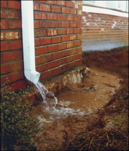 Look out for these three subtle signs that you may have a drainage problem.