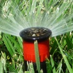 irrigation-sprayer