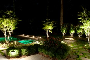 Outdoor lighting can increase safety and security while highlighting the beautiful elements of your yard or deck.