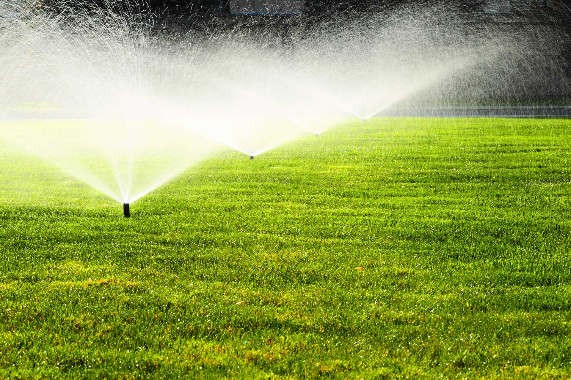 3 Advantages Of Irrigation Systems Aqua Bright