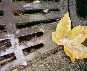 Fall Drainage System