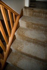 Wet carpet is the ideal environment for unpleasant and even dangerous mold and mildew to grow. Learn more about water damage.