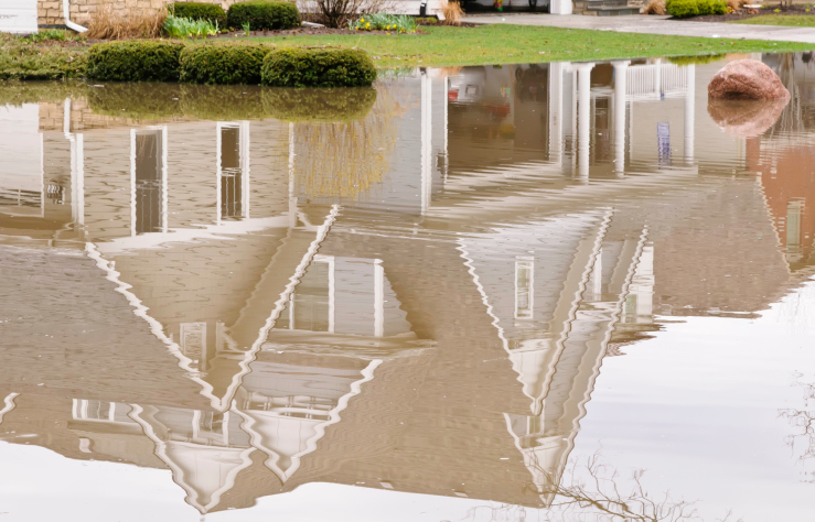 Types of drainage systems natural vs artificial aqua for Types of drainage