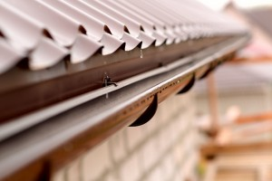 How To Prevent Gutter Blockages