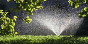 It's time to start managing your irrigation system for fall.